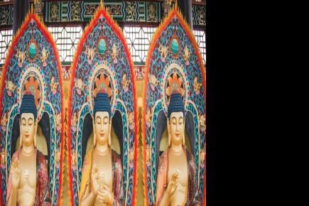 【共迎千佛塔寺建塔卅周年】来为佛寺翻修添砖加瓦哦!